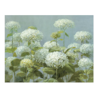 Jardin blanc d'hortensia cartes postales
