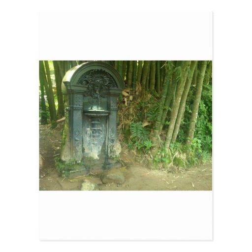 Jardin botanique de Rio de Janeiro de fontaine Cartes Postales