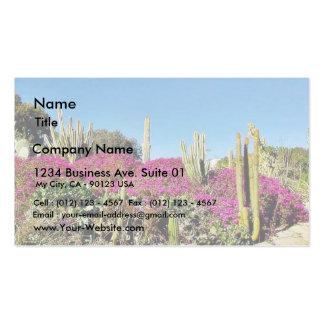 Jardin de cactus carte de visite standard