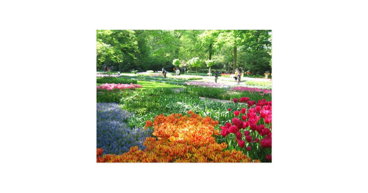 Jardin de keukenhof carte postale de la hollande for Jardin keukenhof 2015
