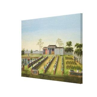 Jardin de pépinière, c.1820-40 (la semaine sur le  toiles
