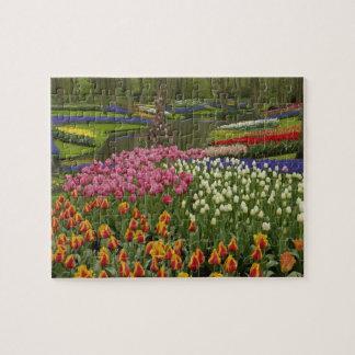 Jardin de tulipe et de jacinthe, jardins de Keuken Puzzle