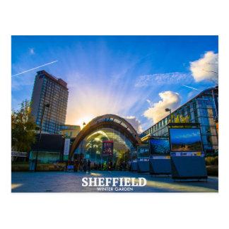 Jardin d'hiver de Sheffield Carte Postale
