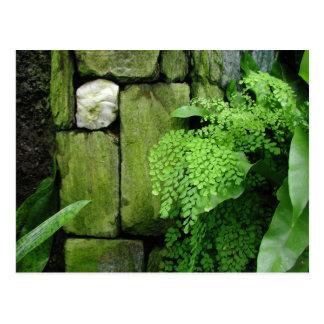Jardin en pierre - carte postale