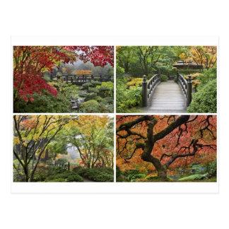 Jardin japonais dans la saison colorée d'automne carte postale
