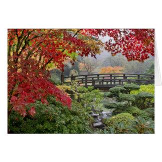 Jardin japonais dans une carte brumeuse de matin