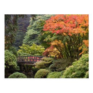 Jardin japonais en carte postale d'automne