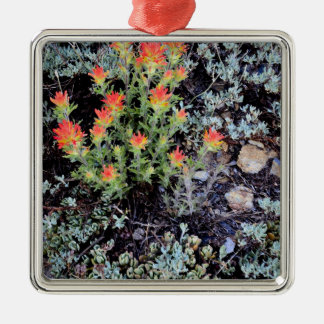 Jardin miniature au lac gem ornement carré argenté