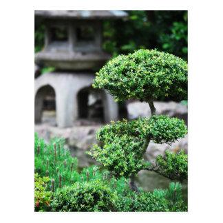 Jardin paisible carte postale