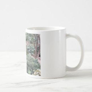 Jardinerie avec la sélection des plantes de mug