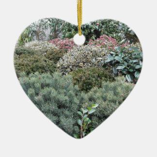 Jardinerie avec la sélection des plantes de ornement cœur en céramique