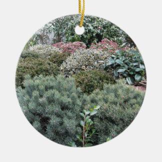 Jardinerie avec la sélection des plantes de ornement rond en céramique