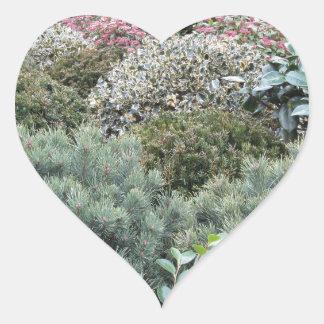 Jardinerie avec la sélection des plantes de sticker cœur