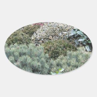 Jardinerie avec la sélection des plantes de sticker ovale