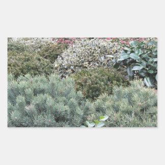 Jardinerie avec la sélection des plantes de sticker rectangulaire
