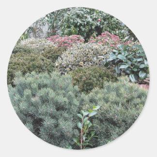 Jardinerie avec la sélection des plantes de sticker rond