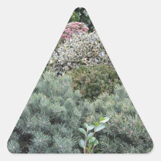 Jardinerie avec la sélection des plantes de sticker triangulaire