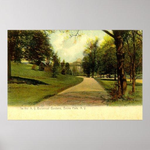 Jardins botaniques, cru 1905 de Bronx New York Poster