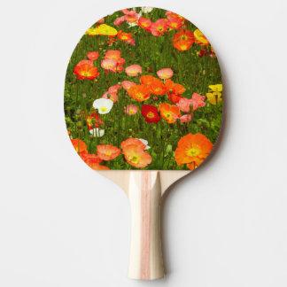 Jardins botaniques raquette tennis de table