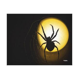 Jaune d'araignée de globe de la toile de