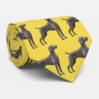 Jaune de cravate de Weimaraner