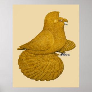 Jaune de pigeon de trompettiste poster