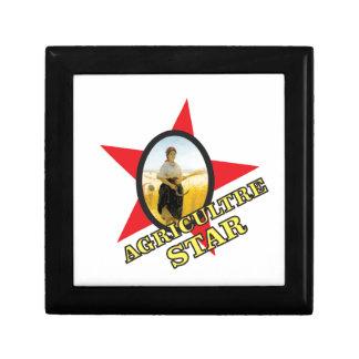 jaune d'étoile d'agriculture boîte à souvenirs