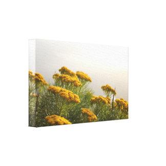 Jaunes copie de toile étirée belles par fleurs