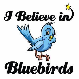 je crois en oiseaux bleus photo sculpture