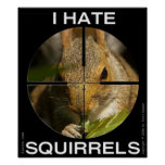 Je déteste des écureuils - dans la portée - affich