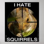 Je déteste des écureuils - dans la portée - affich affiche
