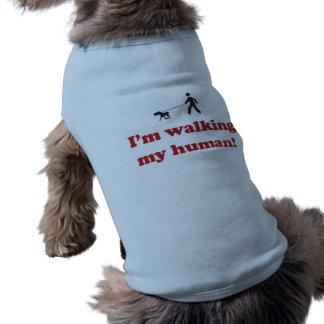 Je marche mon humain t-shirt pour chien