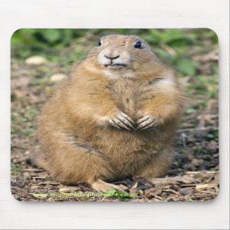 Je ne suis pas gros, je suis tapis de souris câlin
