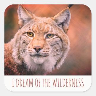 Je rêve des autocollants de chat sauvage de région