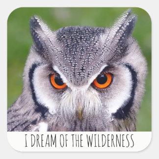 Je rêve des autocollants de hibou de région