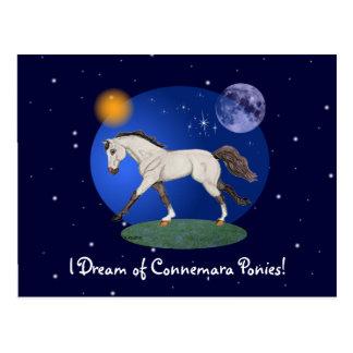 Je rêve du carte pour notes de poneys de Connemara
