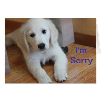 Je suis carte désolée d'excuses