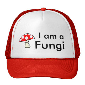 Je suis des champignons casquette de camionneur