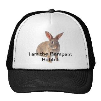 Je suis le lapin effréné casquettes de camionneur