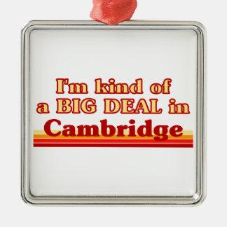 Je suis un peu une affaire à Cambridge Ornement Carré Argenté