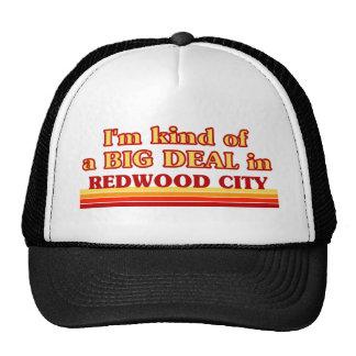 Je suis un peu une AFFAIRE à Redwood City Casquette