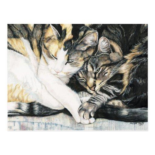 """""""Je veux carte postale d'art de chat tenir votre p"""