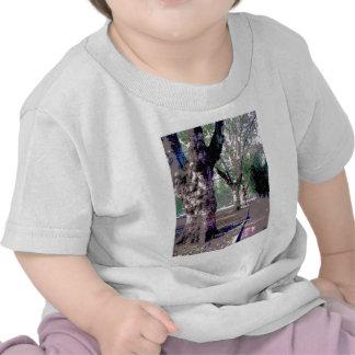 Je veux marcher avec des Abraham-Ploucs ! T-shirts
