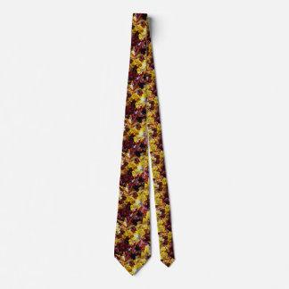 jello de jello partout cravates