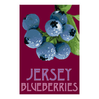 Jersey_Blueberries Posters
