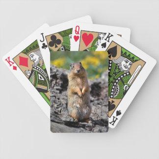 Jeu De Cartes Alerte d'écureuil moulu pour le danger