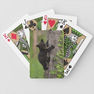 Jeu De Cartes Arbre d'escalade de CUB d'ours noir