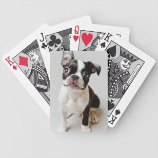 Jeu De Cartes Boston Terrier