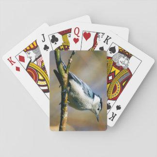 Jeu De Cartes Cartes de jeu Blanches-Breasted de sittelle