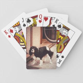 Jeu De Cartes Cartes de jeu chiques de chien